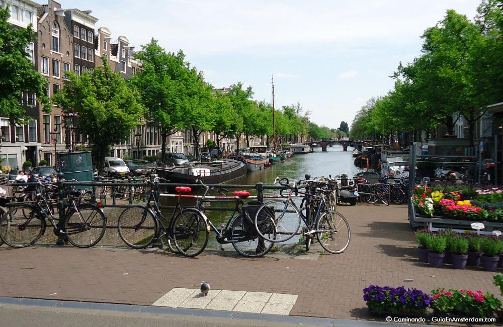 Canales y bicicletas