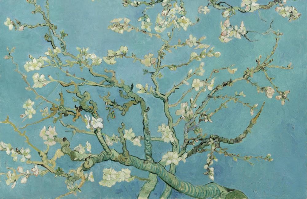 Museo van Gogh tour en español