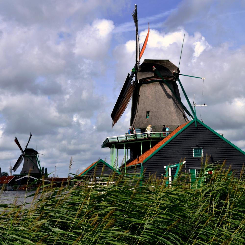 Tour molinos de Amsterdam